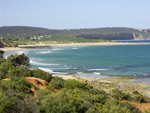 Anglesea main beach from Point Roadknight