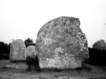 The standing stones, Carnac
