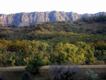 View of the southern Flinders Ranges