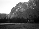 Field near Merced River, Yosemite